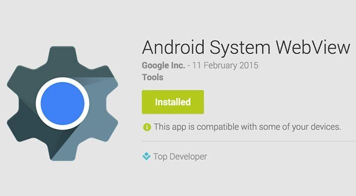 What is the Android WebView app
