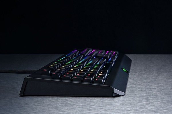 How Important Are the Gaming Keyboard and Mouse for a PC Gamer?